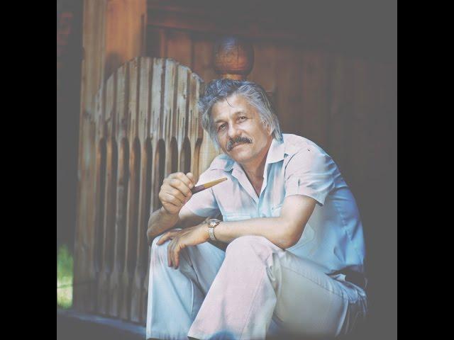 Mihai Volontir - Cântecul prietenilor