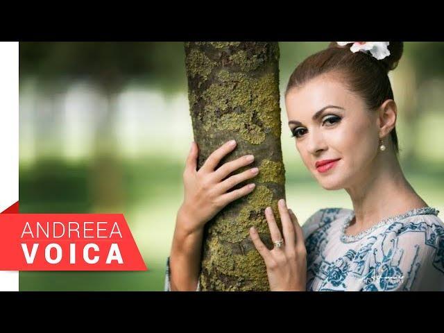 Andreea Voica - Dorule necazule (NOU 2018)