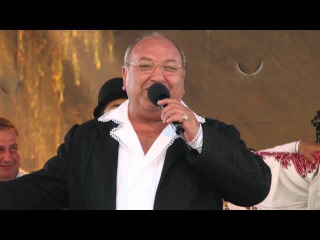 Ion Ghiţulescu - Dacă nu iubeşti acuma