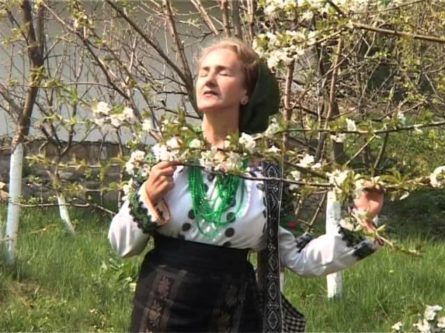 Sofia Vicoveanca – Cu bărbatu' băutor