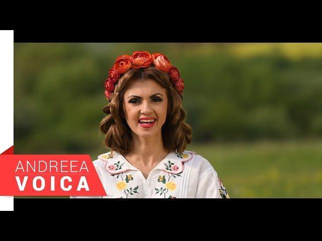 Andreea Voica - Bade, florile-nfloresc