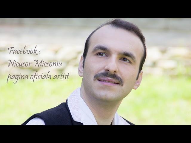 Nicusor Micsoniu - Plina-i lumea de dusmani