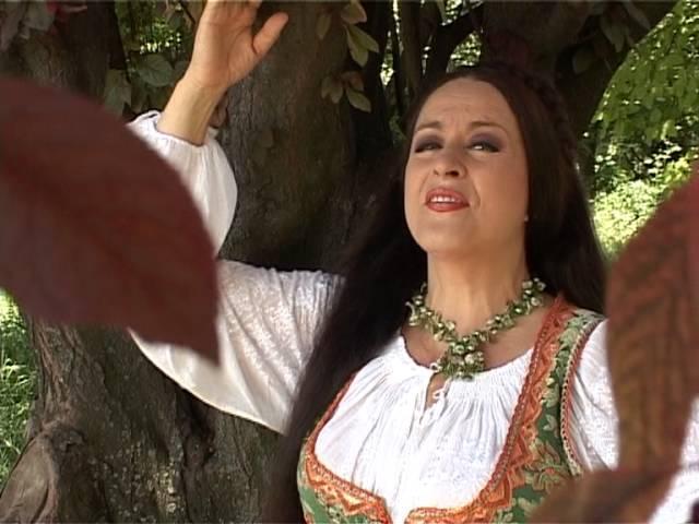 Maria Dragomiroiu - Ţi-am pus iubirea la picioare