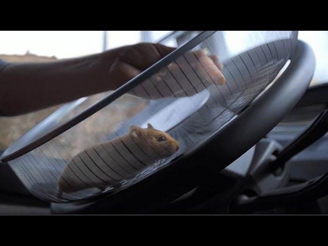 """""""Cascadoria hamsterului"""" - un test al sistemului de direcție marca Volvo"""