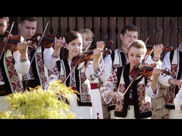 """Ion Paladi - Bunicii cu vocea caldă (Orchestra """"Lăutarii"""" dirijată de maestrul Nicolae Botgros)"""