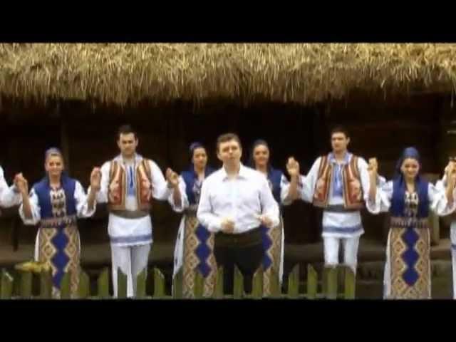 Puiu Codreanu - Orice palmă de la viață