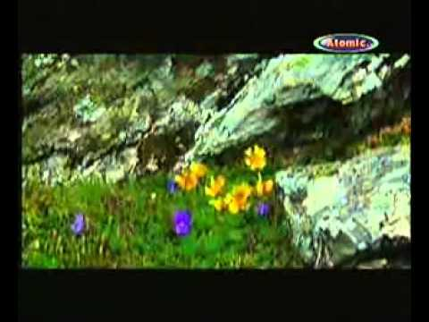 Mircea Rusu Band -  Iarba verde de acasă