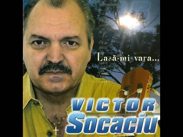 Victor Socaciu - Lasă-mi vara