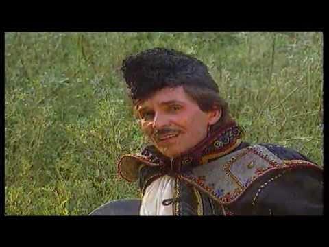 Liviu Vasilică - Fir-ai tu să fii de murg