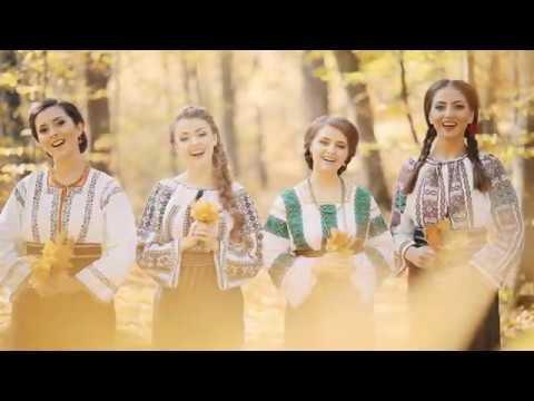 Descoperiți România: Invitație la Botoșani