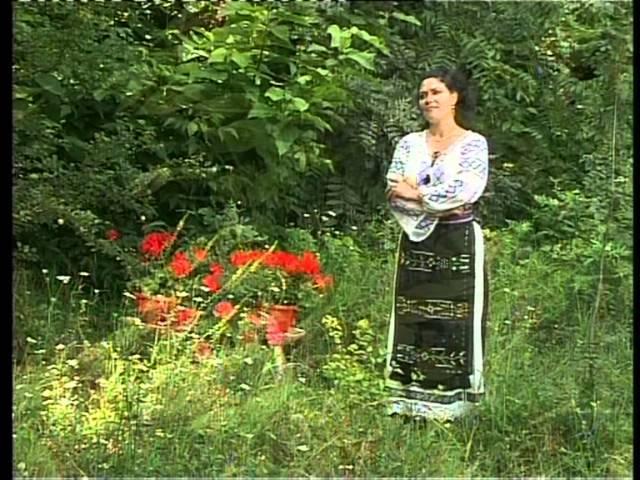 Eugenia Filip - Pleacă lumea-n țări străine