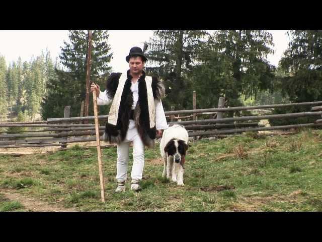 Călin Brăteanu - Cântec de ciobănie